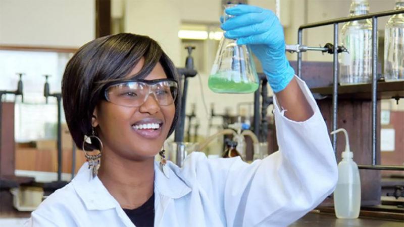 Projet Ebola : L'Équipe